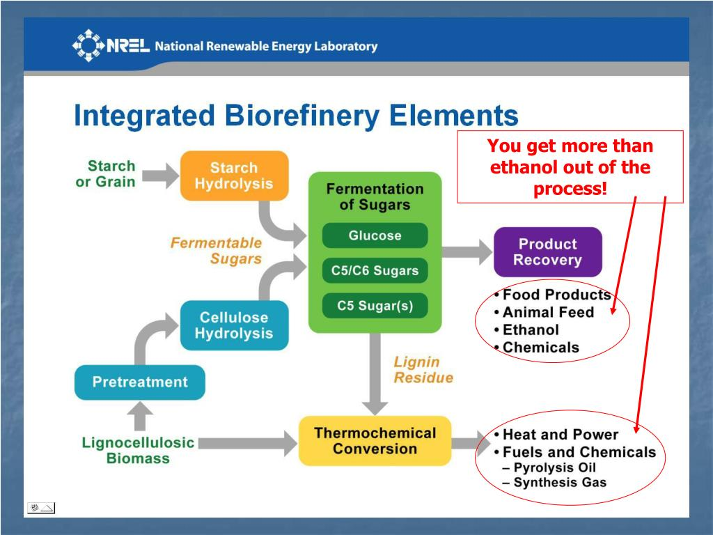 You get more than ethanol out of the process!
