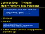 common error trying to modify primitive type parameter