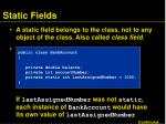 static fields