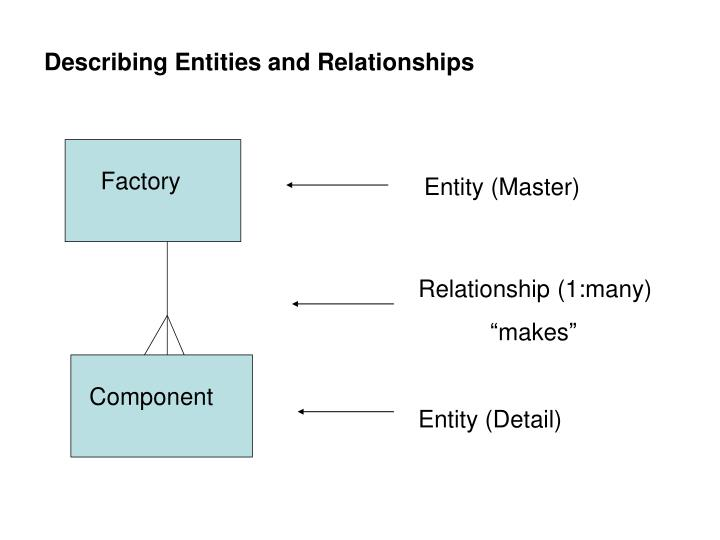 Describing Entities and Relationships