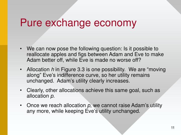 Pure exchange economy