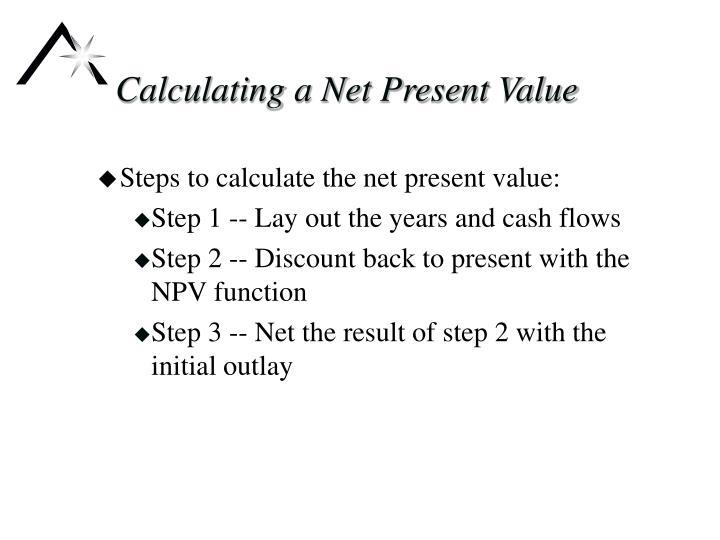 Calculating a net present value