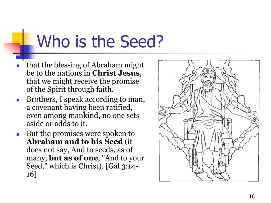 Who is the Seed?