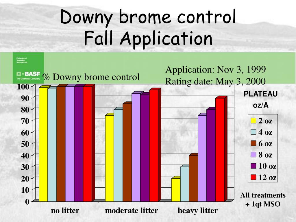 Downy brome control