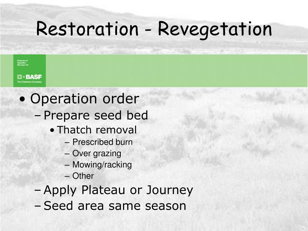 Restoration - Revegetation
