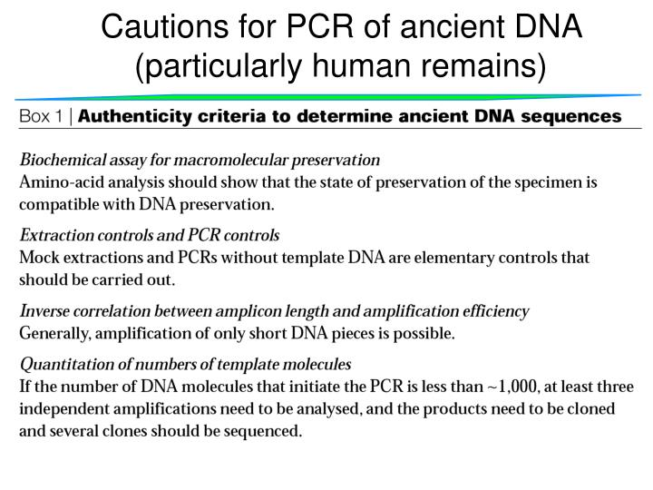 Cautions for PCR of ancient DNA (particularly human remains)