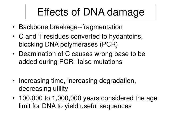 Effects of DNA damage