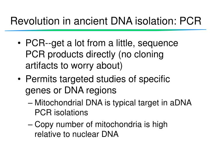 Revolution in ancient DNA isolation: PCR