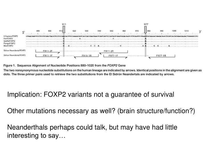 Implication: FOXP2 variants not a guarantee of survival