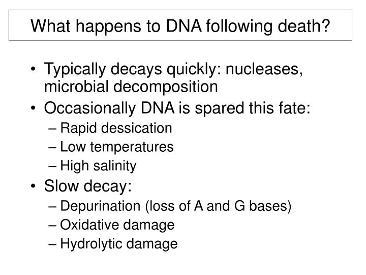 What happens to DNA following death?