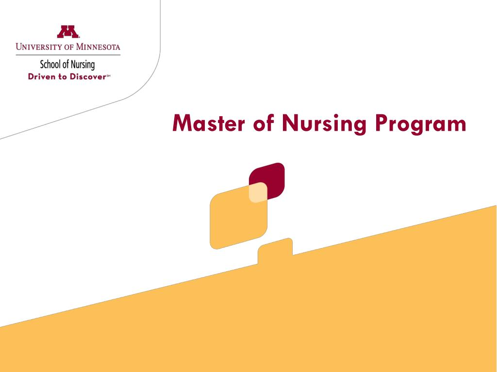 master of nursing program l.