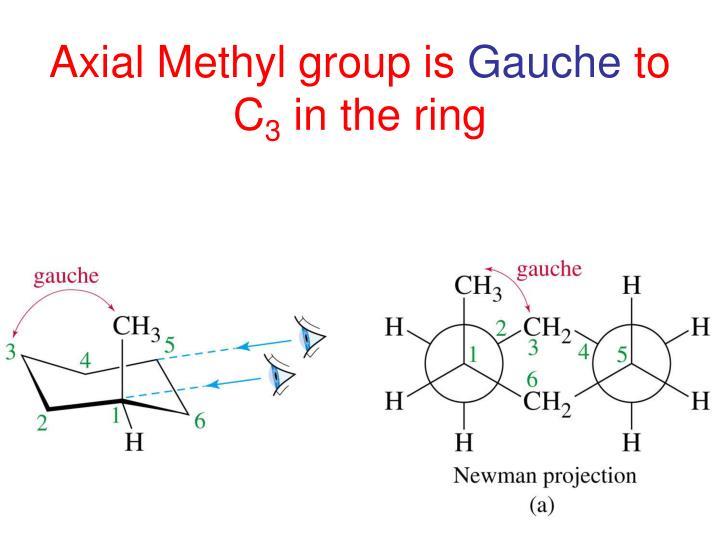 Axial Methyl group is