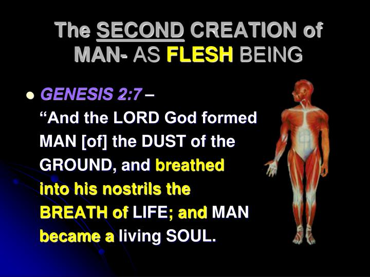 The second creation of man as flesh being