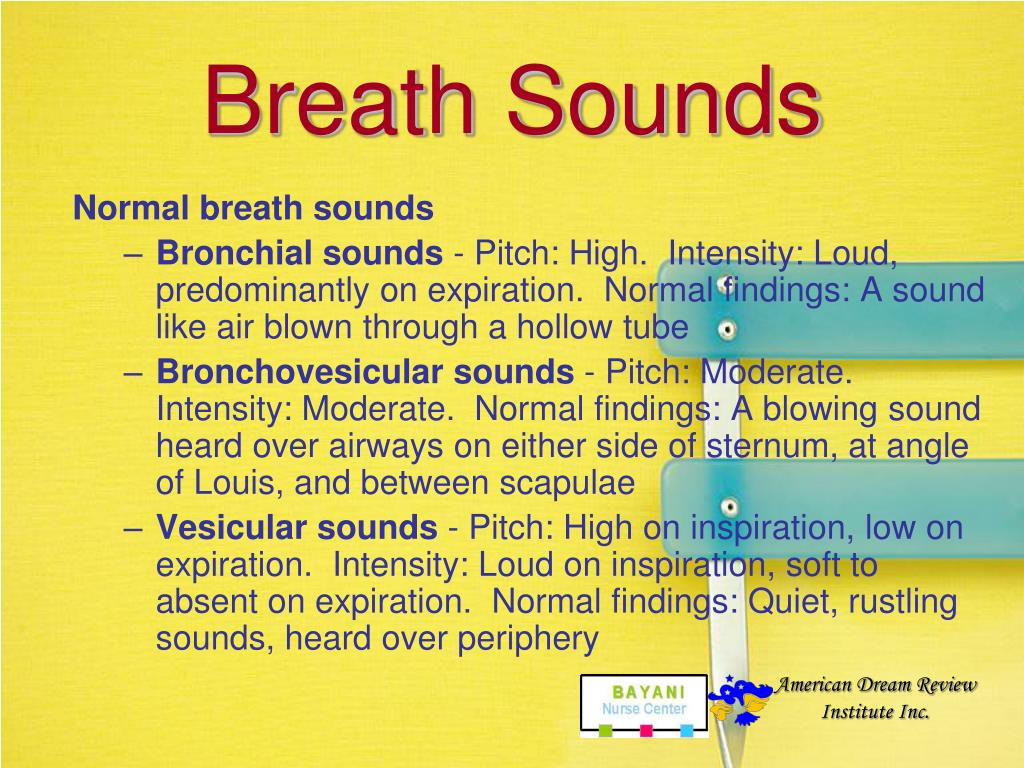 Breath Sounds