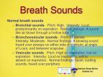 breath sounds24