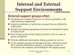 internal and external support environments4