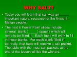 why salt