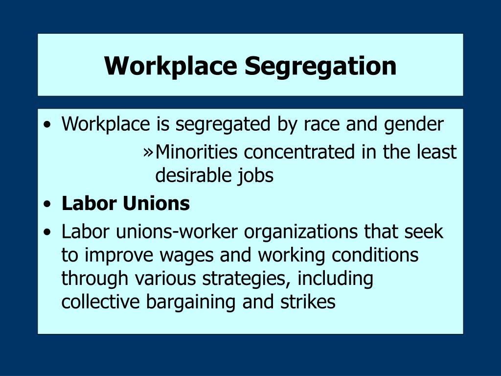 Workplace Segregation