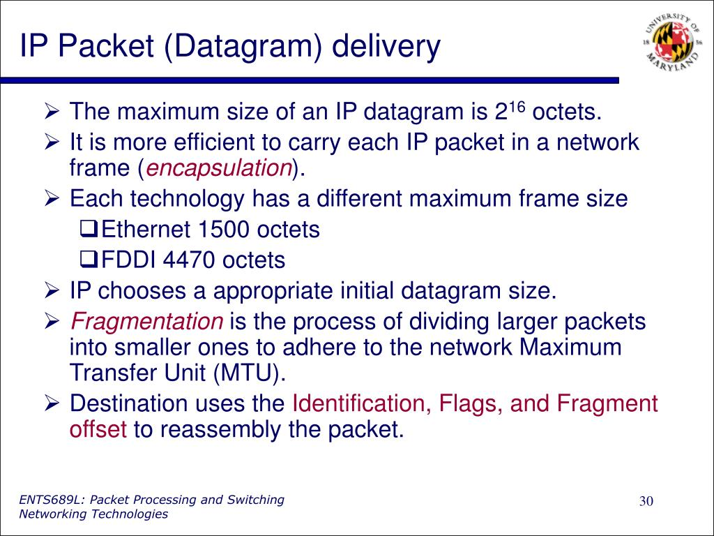 IP Packet (Datagram) delivery
