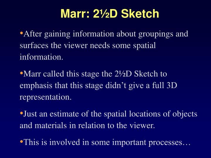 Marr: 2½D Sketch