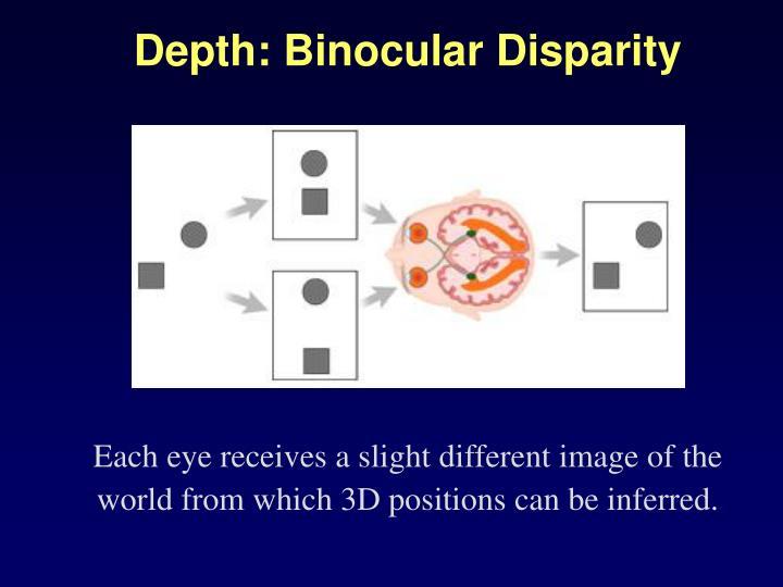 Depth: Binocular Disparity