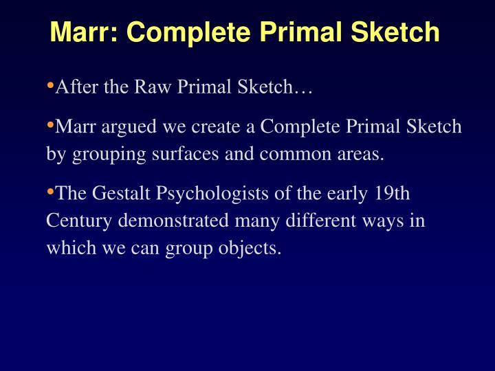Marr: Complete Primal Sketch
