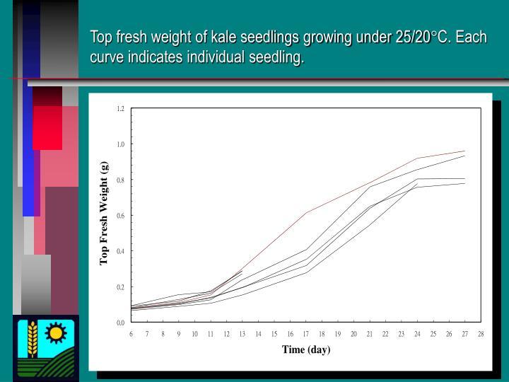 Top fresh weight of kale seedlings growing under 25/20