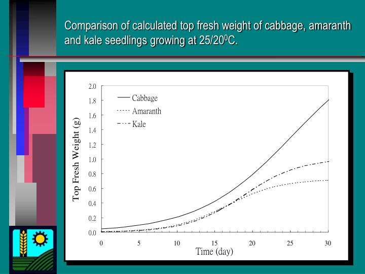 Comparison of calculated top fresh weight of cabbage, amaranth and kale seedlings growing at 25/20