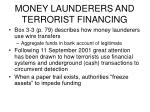 money launderers and terrorist financing