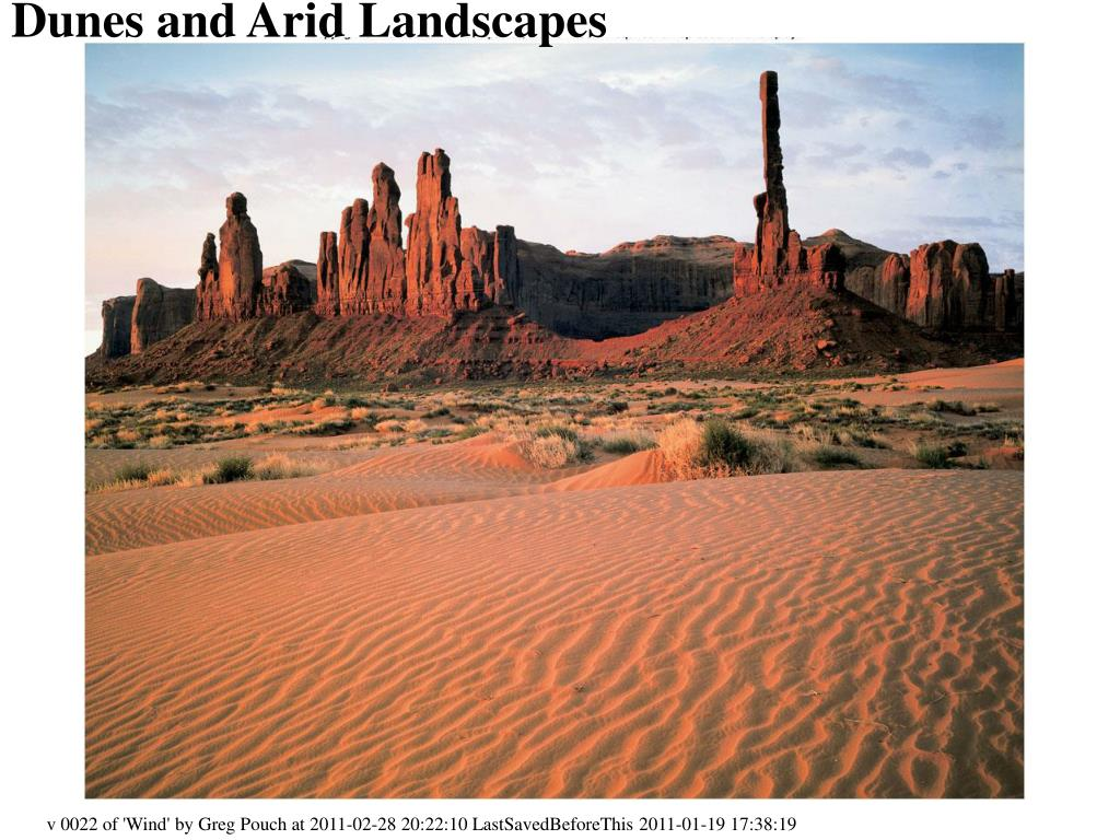 dunes and arid landscapes