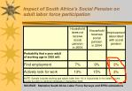 impact of south africa s social pension on adult labor force participation1