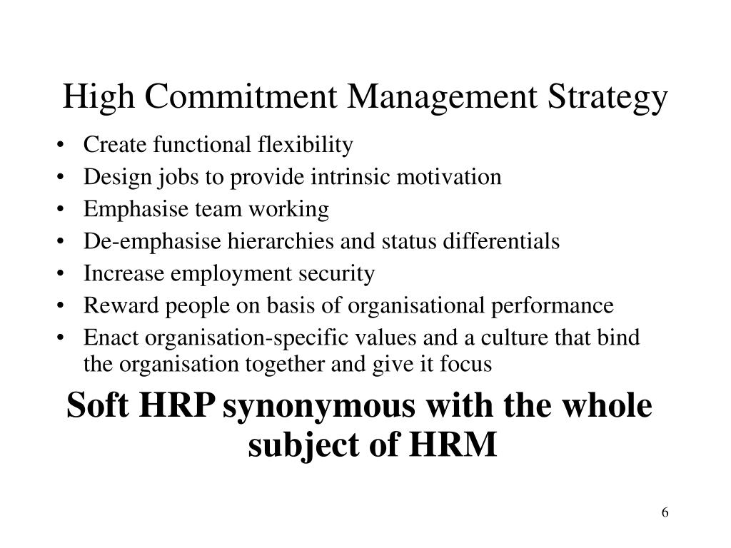 High Commitment Management Strategy