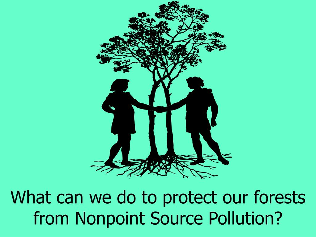 What can we do to protect our forests from Nonpoint Source Pollution?
