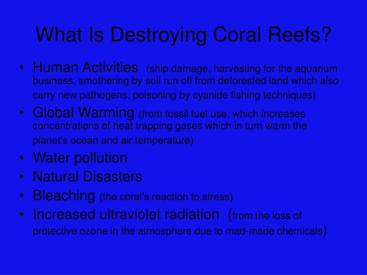 What Is Destroying Coral Reefs?