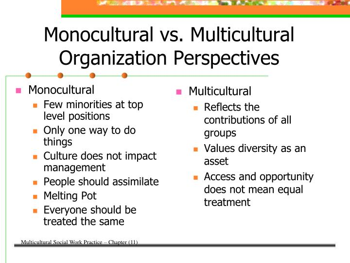 multicultural organization Definition of multicultural organization: where employees of varied backgrounds, cultures, ethnicities, and experiences can contribute freely.