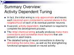 summary overview activity dependent tuning