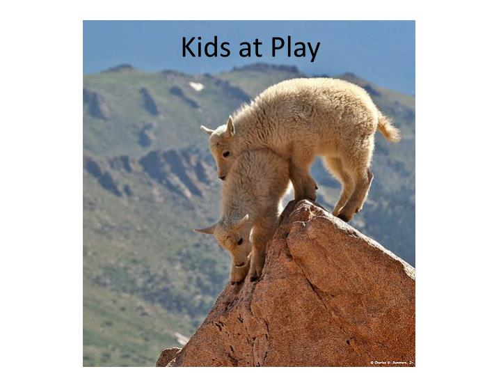 Kids at Play