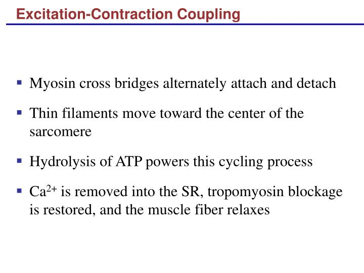 Excitation contraction coupling1