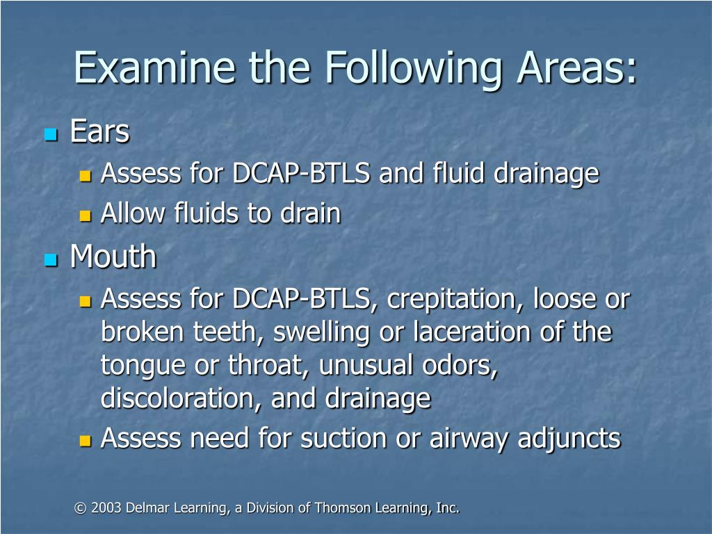 Examine the Following Areas: