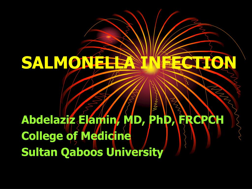 salmonella infection l.