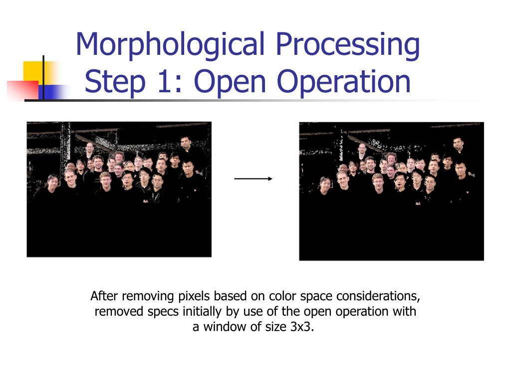 Morphological Processing