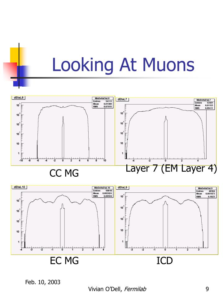 Looking At Muons