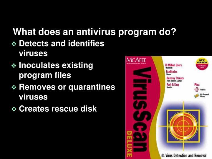 What does an antivirus program do?
