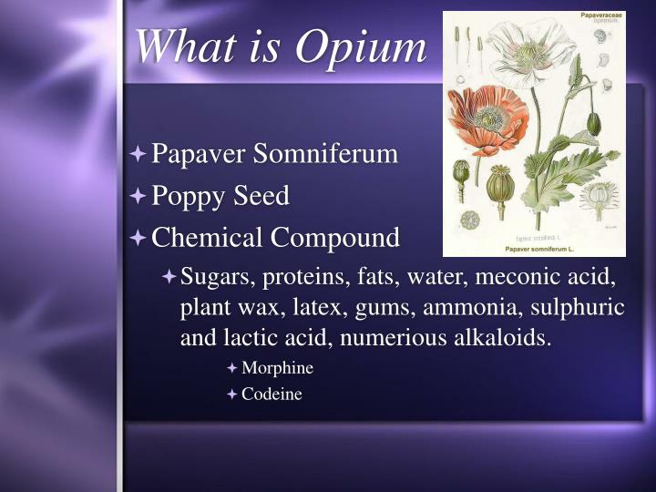 What is opium