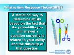 what is item response theory irt