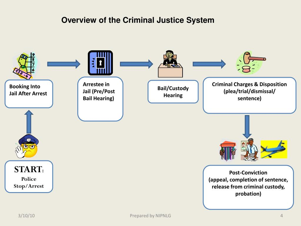 Overview of the Criminal Justice System