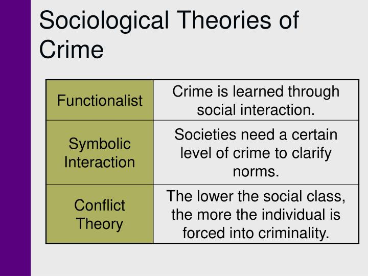 sociological theories of crime essays Sociological theories of poverty essay on two sociological theories of human learning ethics government crime sociology gender literature finance.