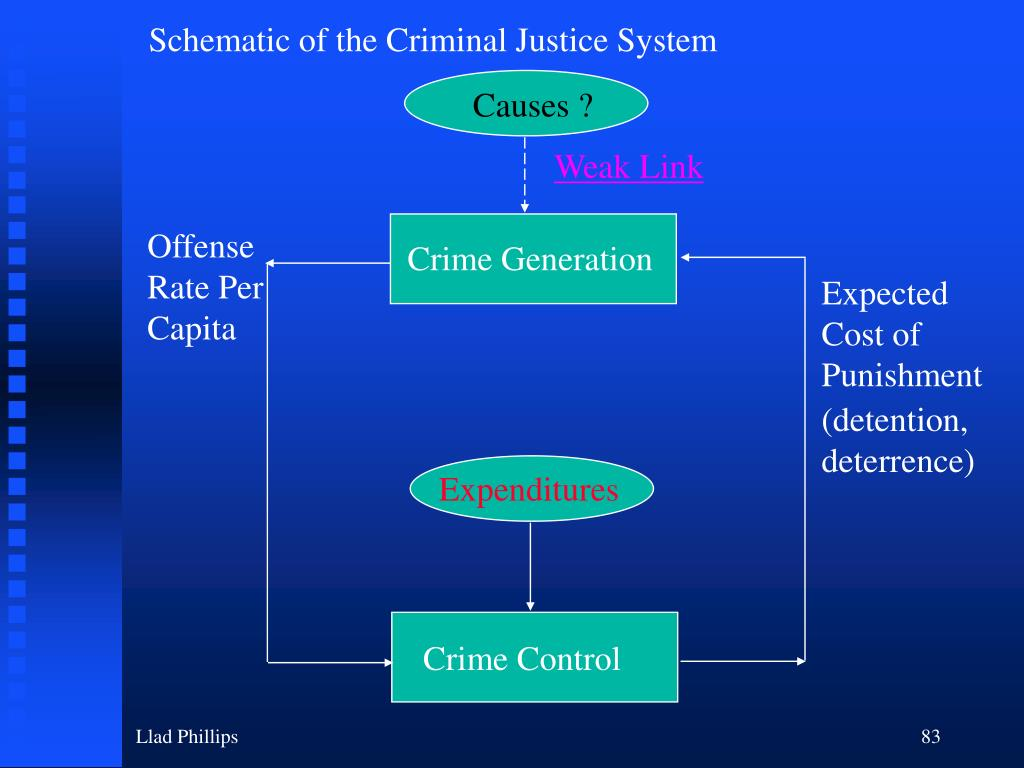 Schematic of the Criminal Justice System