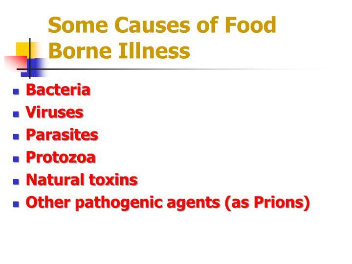 Some Causes of Food Borne Illness