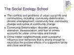 the social ecology school